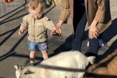 Arlington-Preschool-April-005